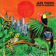Alex Puddu – From The Beginning