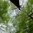 Neues Faltblatt des Umweltschutzamtes – Ein Ausflug ins Grüne