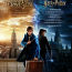 Zum Kinostart im Studio Filmtheater – Harry-Potter-Filmmarathon - in Etappen
