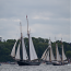 Traditionsschifffahrt – Die neue Schiffssicherheitsverordnung in der Kritik