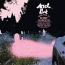 Ariel Pink  – Dedicated To Bobby Jameson